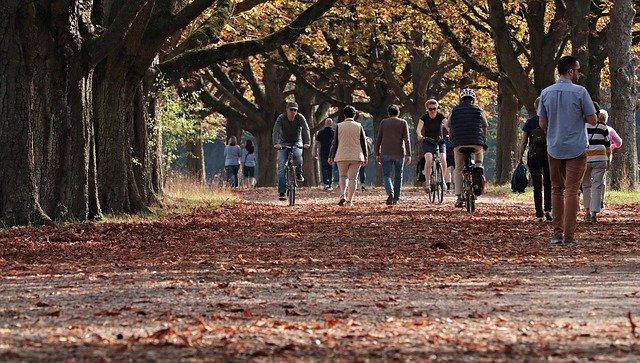 Selbstmotivation lernen - Allee mit Bäumen im Herbst mit Menschen die einen Spaziergang machen
